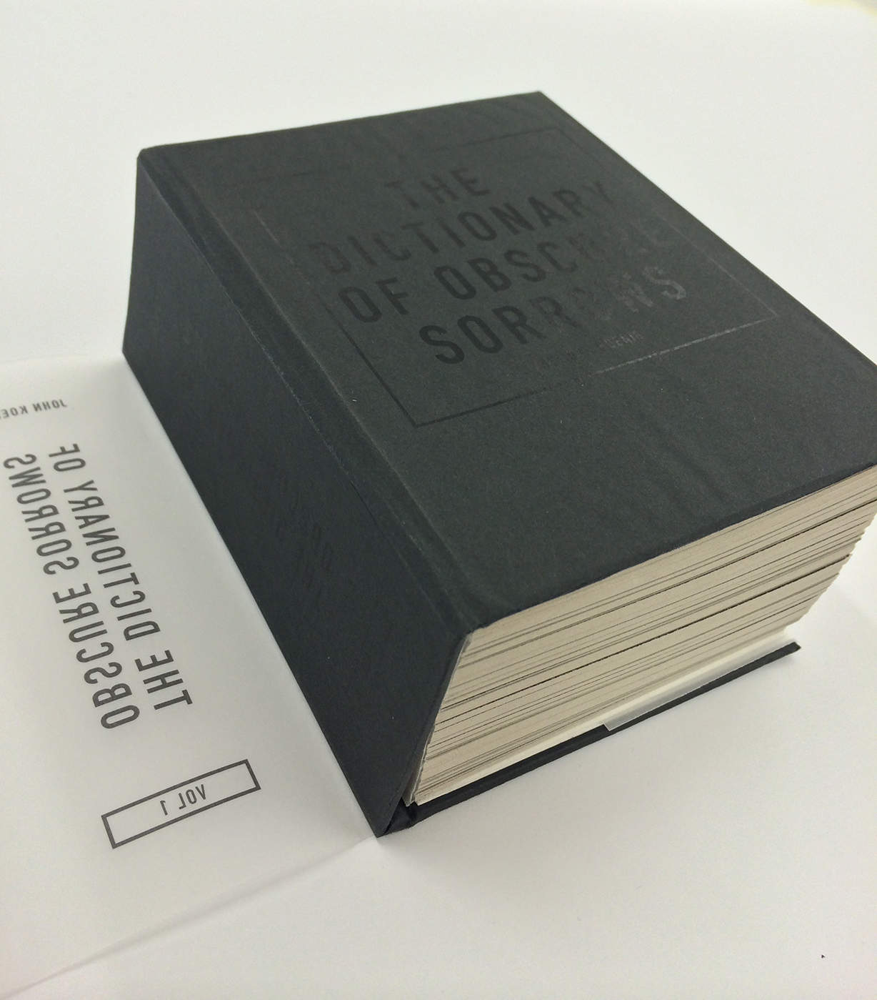The Dictionary of Obscure Sorrows ...